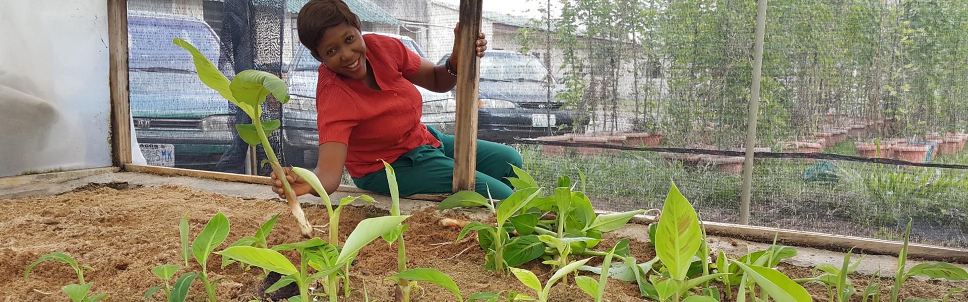Les TIC et l'entrepreneuriat pour les systèmes agroalimentaires inclusifs