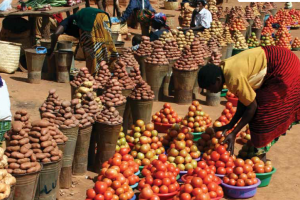 18.Empowering smallholder farmers in markets: Experiences with farmer-led research for advocacy