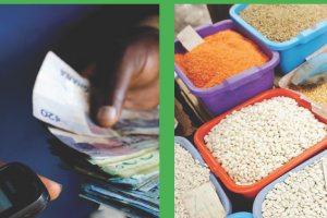 5.Mobile payments: How digital finance is transforming agriculture